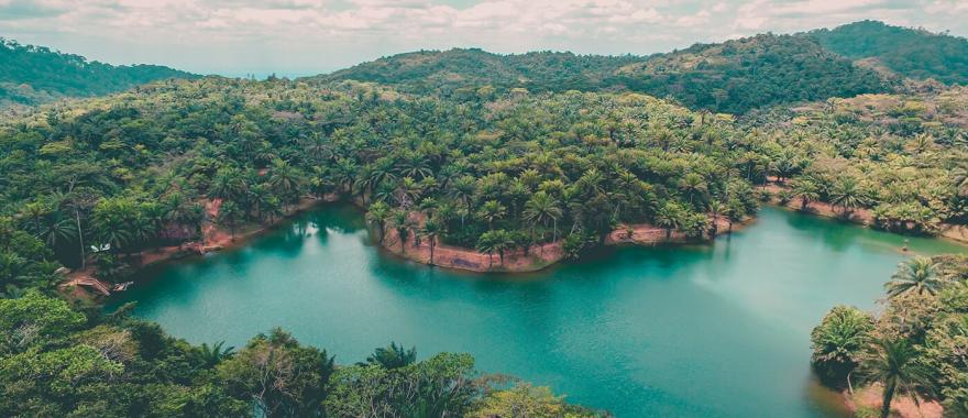 Magoroto Forest, Tanga