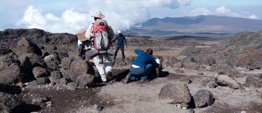 Mt. Kilimanjaro Lemosho Route