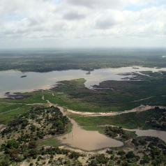Nyerere National Park