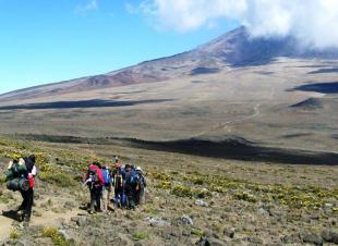 Mt. Kilimanjaro, Tanzania