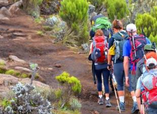 Mt. Kilimanjaro Hike